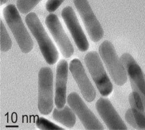 Gold nanorods - TEM